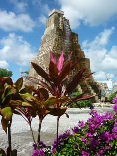 Costa Maya, Mexico, located right at the port. Very Cool!