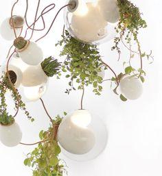 Hanging garden lamps mimic climbing vines planter, plant chandeli, light