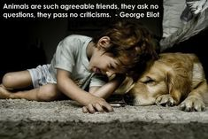 Great Dog Quotes - Simply Stacie
