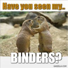 #binders Have you seen my Binders?