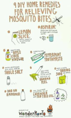 DIY mosquito bite remedies. So need this right now