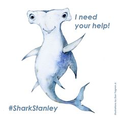 If you would like to help #SharkStanley with his mission, you can print this picture of him (or his friends Manta Reina, Pierre le Porbeagle, and Waqi Whitetip), cut it out, and take a photo with him anywhere you wish. Then please send him this photo along with your name and where you are from!