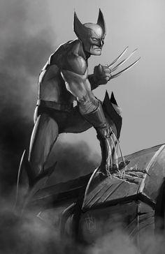 the wolverine, marvel comics
