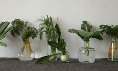 Vegetable Decor