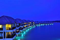 Tahiti honeymoon, bucket list, palm resort, dream, golden palm, blue, french polynesia, travel, place