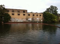 A crane looks on the Bronx River as we scout the location for the Bronx River Alliances Pedal and Paddle event.