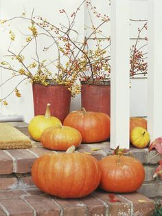 Too busy to decorate for Halloween? Just set a few un-carved pumpkins out on your doorstep and arrange berry branches cut from your yard inside vintage tin buckets. Done!