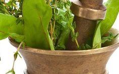Veria Living website - Yogi Cameron's ayurvedic healing recipes