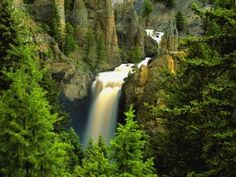 Tower fall is the most popular waterfall in Yellowstone Park
