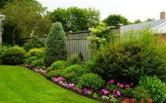 Landscaping along fence.