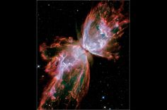 Butterfly Nebula. This nebula's 'wings' are rolling cauldrons of 36,000 degrees gas, and it's 'body' a dying star unleashing ultraviolet radiation. Located in the constellation Scorpius, the Butterfly Nebula is two light years wide.