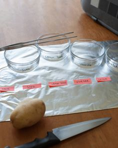 Science Fair: What's the Best Way to Stop Cut Fruits and Vegetables from Turning Brown?