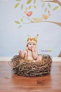 Organic Realistic Birds Nest Photo Prop-Material option A.    $75.00