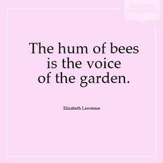 The hum of bees bee knee, garden quotes, flower, honey bee