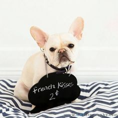 French kisses #puppylove