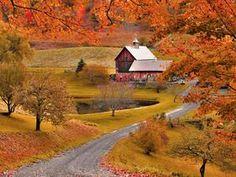 Sleepy Hollow Farm in Autumn, Woodstock, Vermont