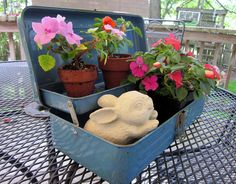 old tool box as planter!