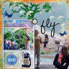 Disney Scrapbook Page Layout - Flights of Wonder at Animal Kingdom by Sharon