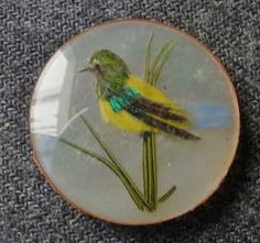 Antique Victorian Bird w/Real Feathers & Mother of Pearl in Glass Dome Button