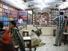 Retail Cow! #India