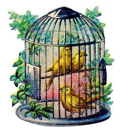 canaries in a cage. This is super fucking cute & pretty. Except I'd want the cage door opened (because I'm a hipster cliche) #ink #Tattoo #Art