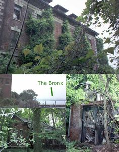 North Brother Island, New York: This abandoned 20-acre island sits amazingly close to the bustling center of New York City yet is completely unused. It was home to a hospital in the 19th Century, then housed veterans after World War II before becoming one of the first drug treatment centers for teens in the 1950s. Corruption and failure caused the facility to close and the island has since been off limits to the public, though some urban explorers have made their way onto it anyway. The island w