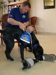 Veteran Stories - Canine Companions for Independence