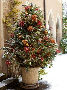 Potted Frasier Fir - Dress up your exterior for Christmas with winter containers filled with evergreens and natural bursts of color. Make a potted Frasier fir merry with a combination of pretty garden items, such as dried artichokes, pear gourds, dyed eucalyptus, caspia, astilbe seedpods, dried hydrangea blooms, and a pinecone garland.