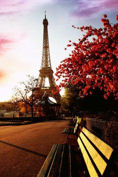 Bench in Paris