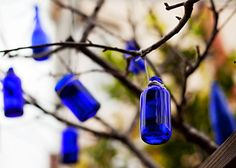 Blue bottle tree - best history of bottle trees at Felder Rushing's site http://www.felderrushing.net/HistoryofBottleTrees.htm   #South  #Southern  #bottle