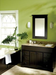 Love the green walls and dark wood cabinets! Great for my guest bathroom!