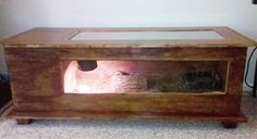 Pets on pinterest tortoise habitat tortoise table and for Coffee table enclosure