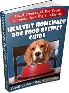 Discover How To Make Homemade Dog Food Recipes