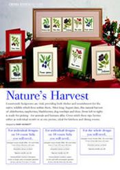 Nature's Harvest, designed by Mary Hickmott, originally published in New Stitches, Issue 78.