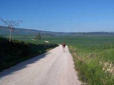 Camino outside Cizur Menor - Pamplona to Puente la Reina