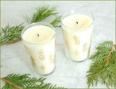 Tropical Candles: http://beachblissliving.com/beach-candles-gift/