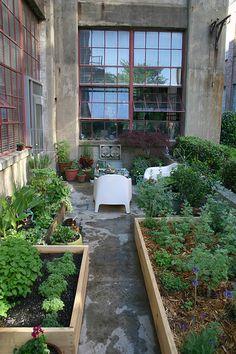 Pretty container gardens.