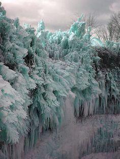 Crystallized trees