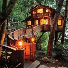 cabin, dream homes, tree houses, treehous, santa monica, guest houses, place, dream houses, swiss family robinson