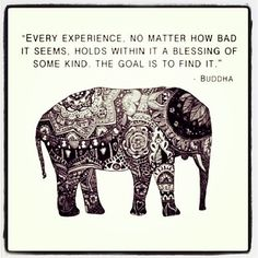 """Every experience no matter how bad it seems, holds within it a blessing of some kind.  The goal is to find it."" -Buddha"
