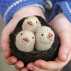 Felted chicks in a nest. Bossy Feltworks.