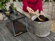 How to Make Your Own Terrarium : Outdoors : Home & Garden Television