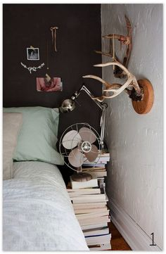 a set of antlers and a set of books