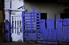 indigo fence with white gate