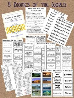 ***This is Part 2 of the Biomes ~ Complete Packet also available for purchase in my store.***This is a 13-page product which examines the diffe...$2.50