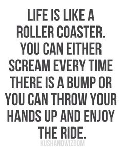 ride, rollers, life, hands, thought, inspir, roller coasters, enjoy, quot
