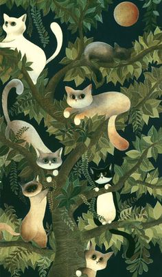 tree cats, posted by unanuvola.tumblr.com