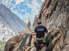'Are you looking at me?' #Climbing #Humour