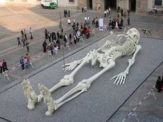 Hoax Message Claims Giant Ghatotkacha Skeleton Unearthed in India