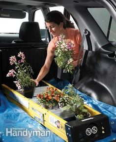 Tips for Easier Gardening - Step ladder keeps plants from tipping  The spaces between the rungs of a stepladder are great spots to transport tender plants. No more messy spills during turns!